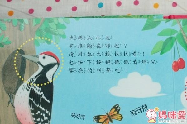 華碩文化 放大鏡自然觀察有聲書