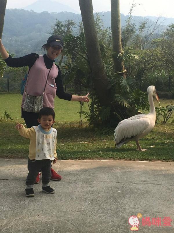 新竹縣北埔鄉的「綠世界生態農場」