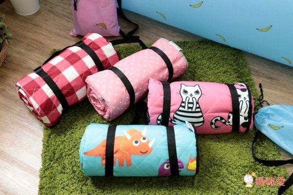 【Go Wild 野餐墊 和空氣沙發床】