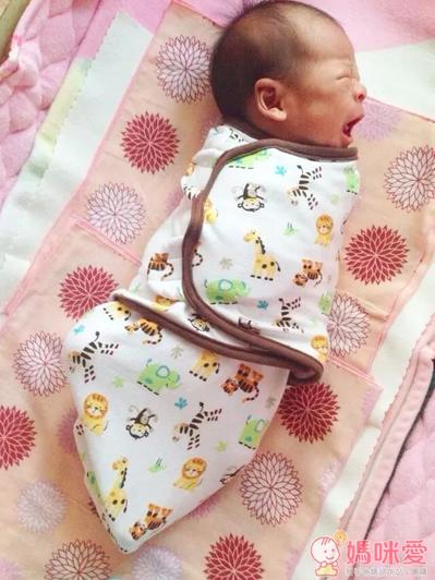 Summer Infant,包巾,懶人包巾,新生兒,純棉包巾