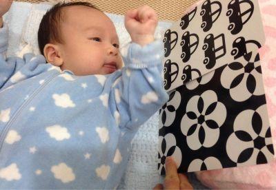 時報出版(小時報) - BABY圖卡(七入)-0歲圖卡:baby+生活用品篇+1歲圖卡:動物+蔬果+交通工具+海洋+2歲baby職業圖卡 by Natalie Tsai