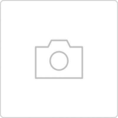 日本 kukka hippo - 迪士尼小童直傘-奇奇蒂蒂 (40cm(身高:95-105cm)) by Amandine Chang