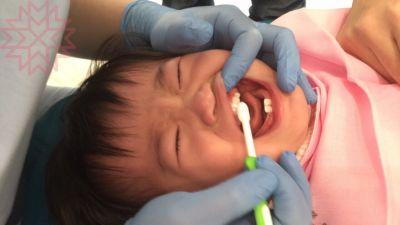 日本 Pigeon 貝親 - 嬰兒乳牙訓練牙刷-[第一階段]-綠色-6~8個月 by Vivian Tsai