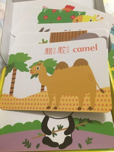 時報出版(小時報) - BABY圖卡-1歲baby動物圖卡+1歲baby交通工具圖卡-盒裝二入 by Anny Cheng