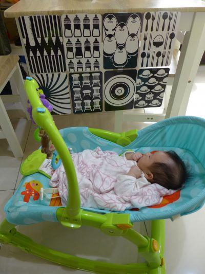 時報出版(小時報) - BABY圖卡-1歲baby動物圖卡+1歲baby交通工具圖卡-盒裝二入 by Sunnybird