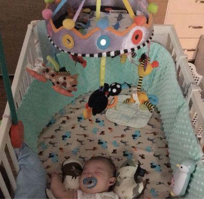 加拿大 KUSHIES ZOLO - 嬰兒床吊掛式感官玩具 by 謝謨