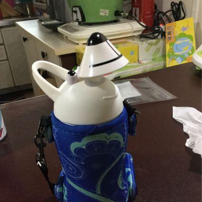 日本Thermo mug - 動物造型不鏽鋼水壺-粉紅小豬-380ml by ivy