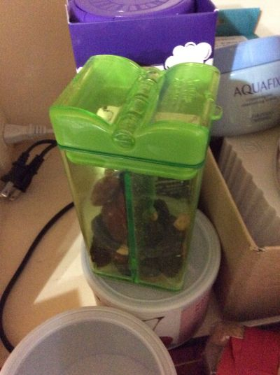 加拿大 Snack in the Box - Tritan兒童零食攜帶盒-橘色 (355ML) by ivy