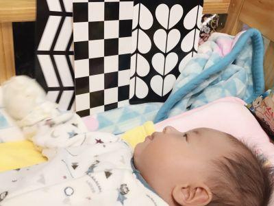 時報出版(小時報) - BABY圖卡-1歲baby動物圖卡+1歲baby交通工具圖卡-盒裝二入 by 石昕諭