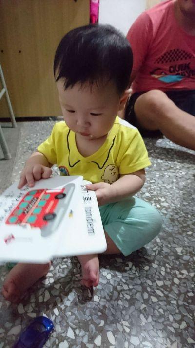 時報出版(小時報) - BABY圖卡-1歲baby動物圖卡+1歲baby交通工具圖卡-盒裝二入 by Shu Hua  Chen