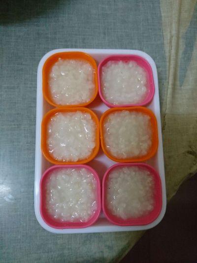 日本 Richell 利其爾 - 彩色副食品分裝盒-桃紅色-25mlx6入 by Winni Tsai