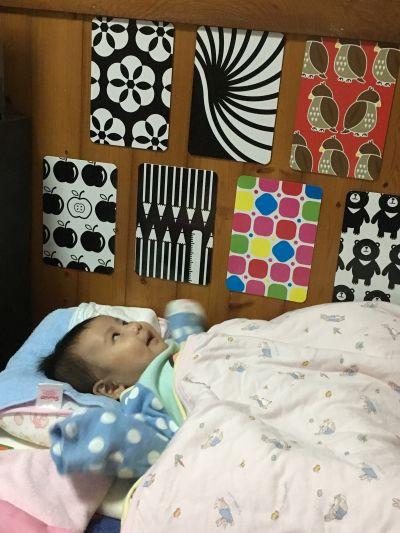時報出版(小時報) - BABY圖卡-1歲baby動物圖卡+1歲baby交通工具圖卡-盒裝二入 by 潘君君
