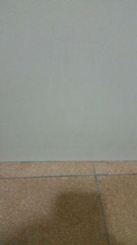 日本山崎小海豹 居家清潔好物大集合 日本大人氣!特殊刷毛不需使用清潔劑!還有除霉剋星、馬桶清潔芳香凝膠 by 梅子