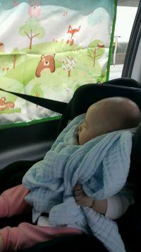 韓國 The Zari 汽車遮陽窗簾 / 安全帶娃娃 連假出遊必備!遮光達 99.9 %★可愛安全帶娃娃,讓孩子舒服繫住安全帶! by 靜靜