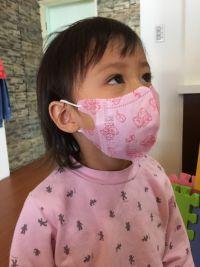 【藍鷹牌】MIT  幼童(2-6歲) 三層立體防塵口罩 寶貝戴一整天也好舒適~阻隔 0.3 微米細粉塵 95% 以上!貼合臉型不悶熱 by Audrey Lin