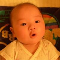 Tina Liang avatar